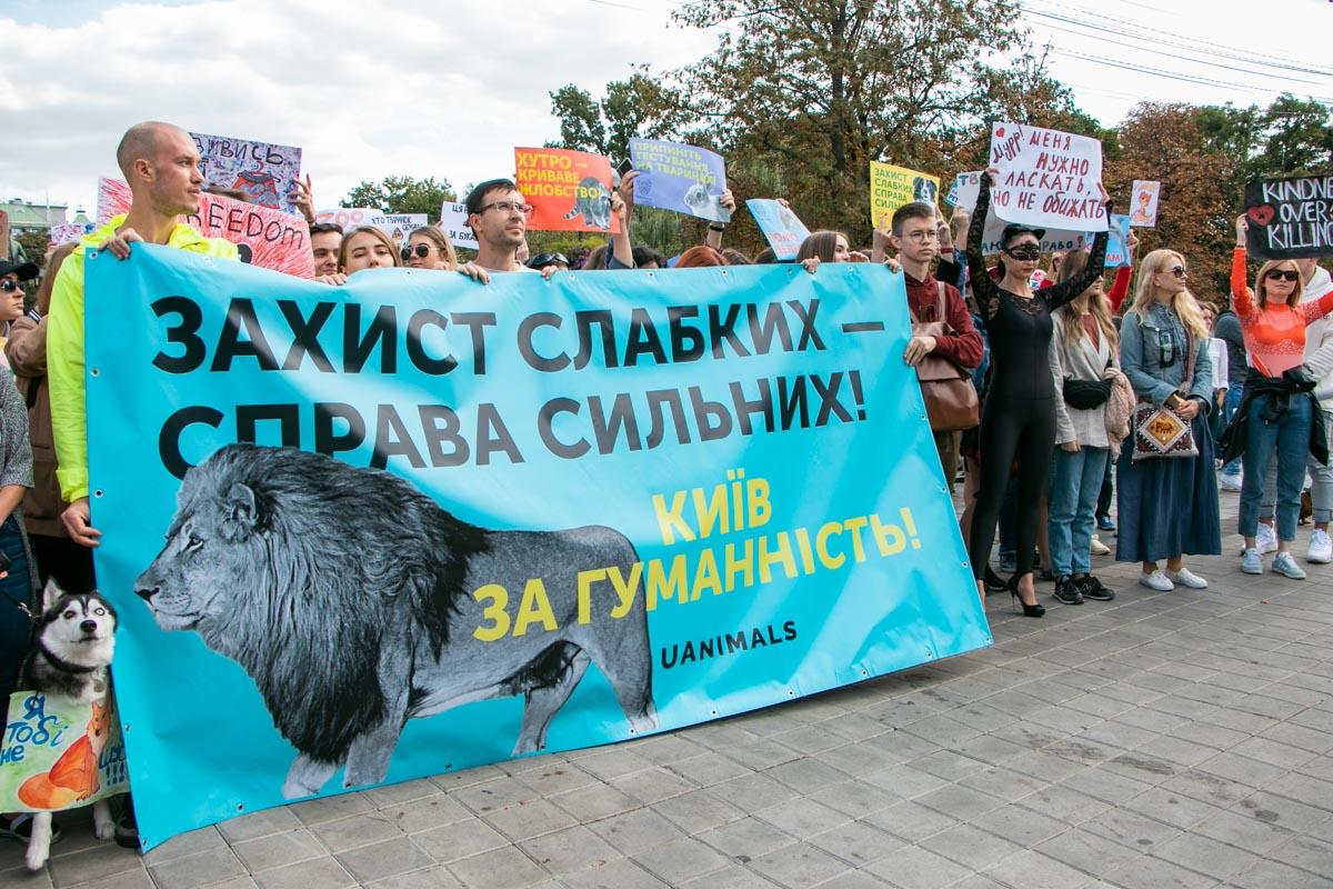 Зоозащитники требуют запретить цирки с животными