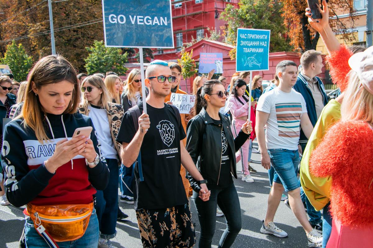 Вегетарианцы выступают против убийства животных ради еды
