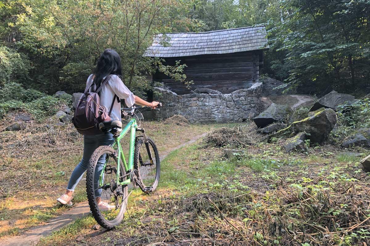 Старая мельница тихонько прячется в лесу