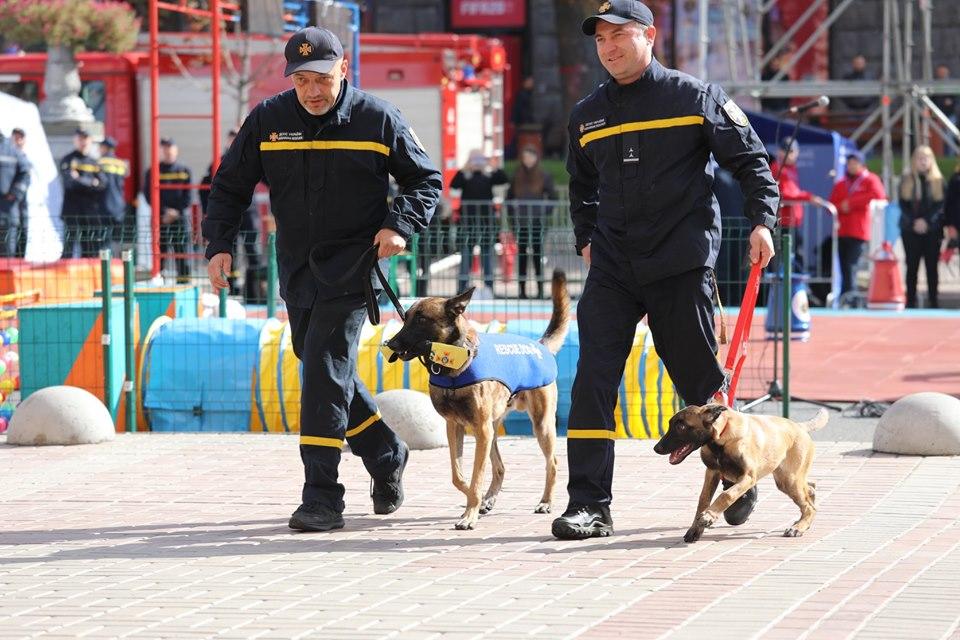 Собаки-спасатели вынесли малышам форму