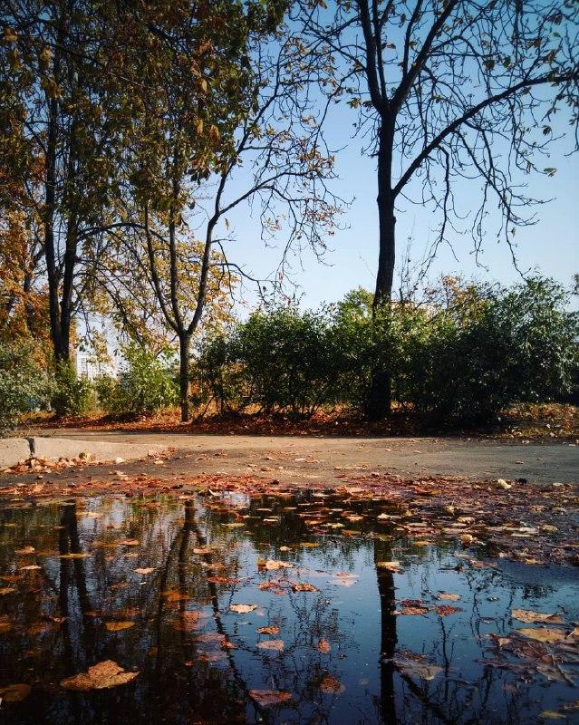 Осень, остановись! Мы не успеваем налюбоваться. Фото: @photo_brezitskiy