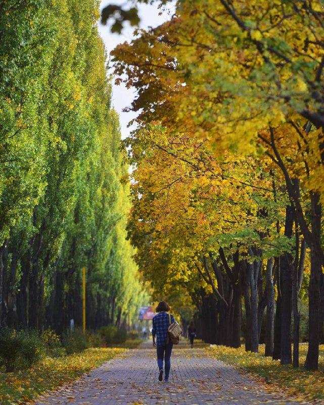 Вот бы всю осень такую, как на этом фото от @istetsen