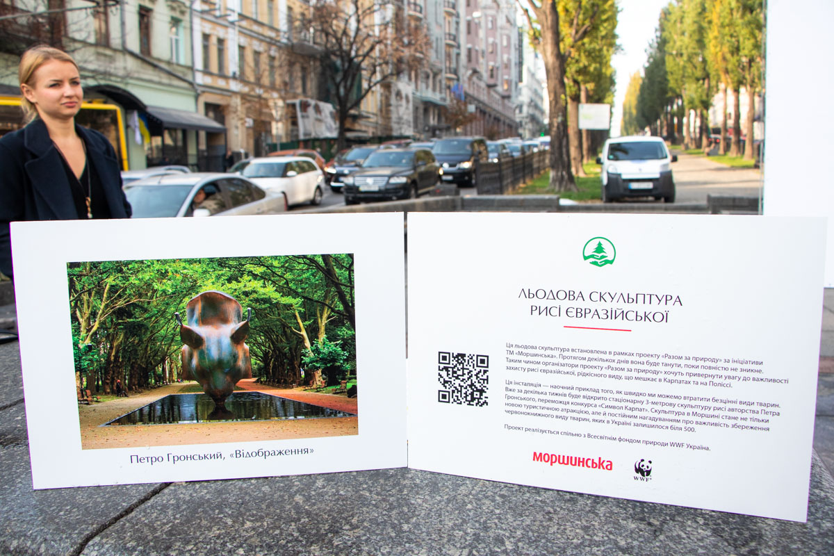 """Именно так организаторы эко-проекта """"Вместе за природу"""" обращают внимание общества на проблему исчезновения"""