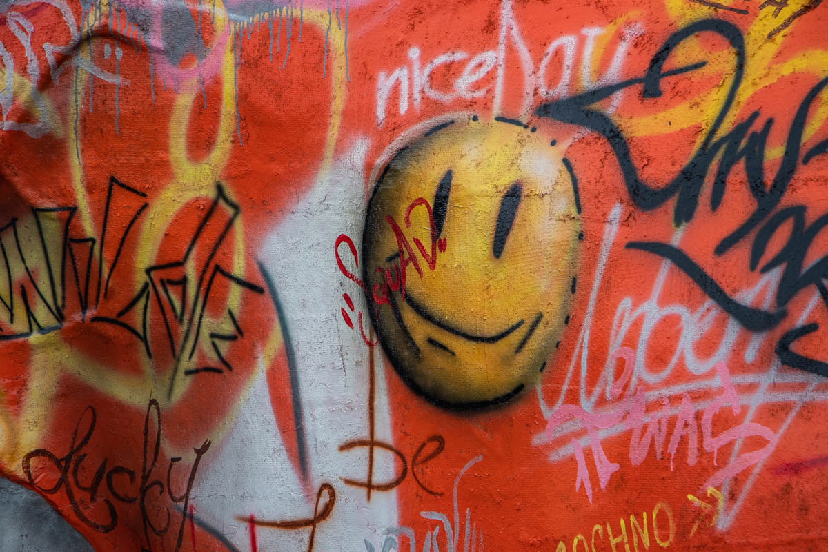 Оранжевую кофту бульдога разукрасили уличными граффити