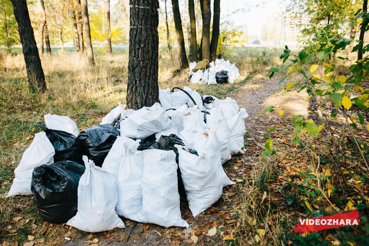 В общей сложности за три часа участники флешмоба собрали более сотни мешков с мусором