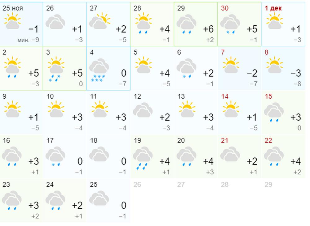 Синоптики обещают теплый декабрь