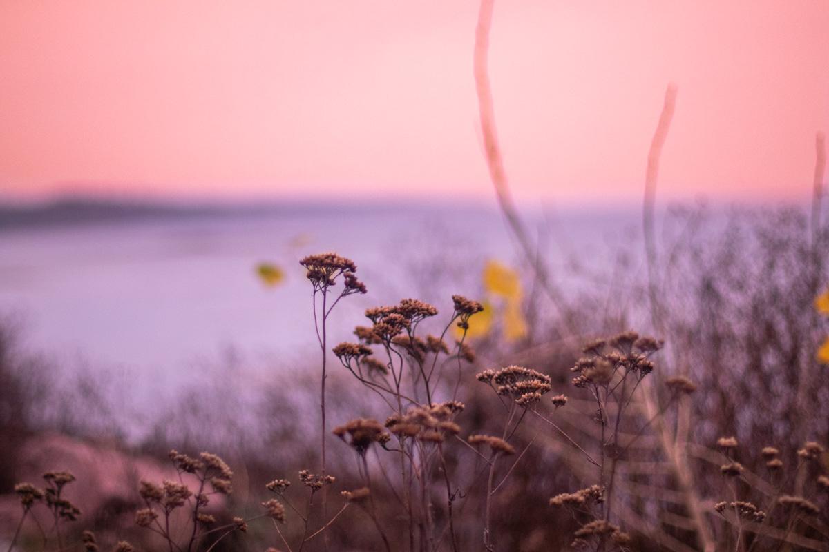 В голове пролетают теплые воспоминания, мысли, на которые просто не хватало времени в повседневной суете