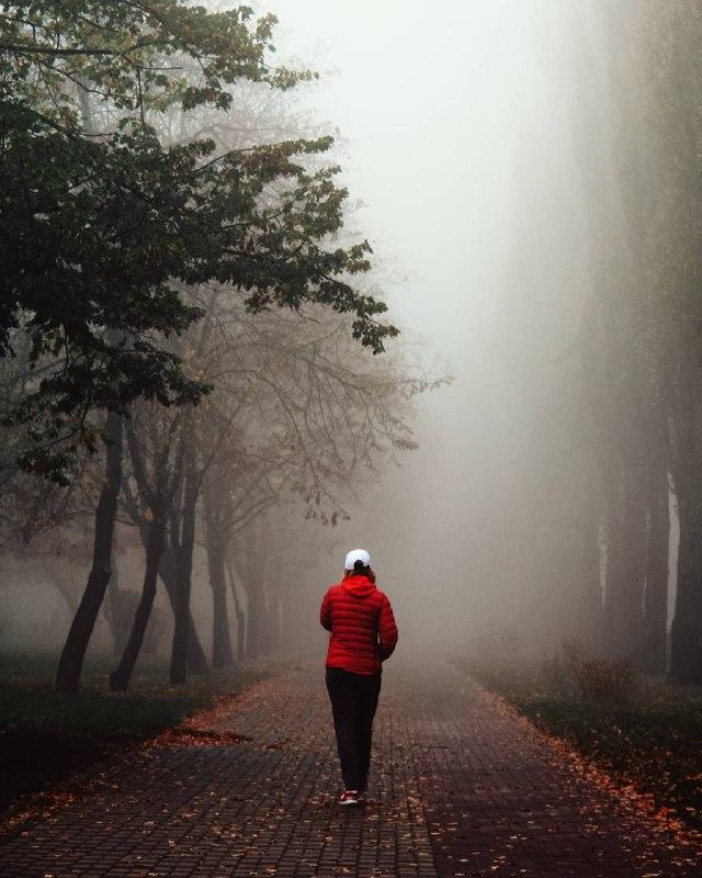 И туман не прячет его красоту. Фото: @istetsen