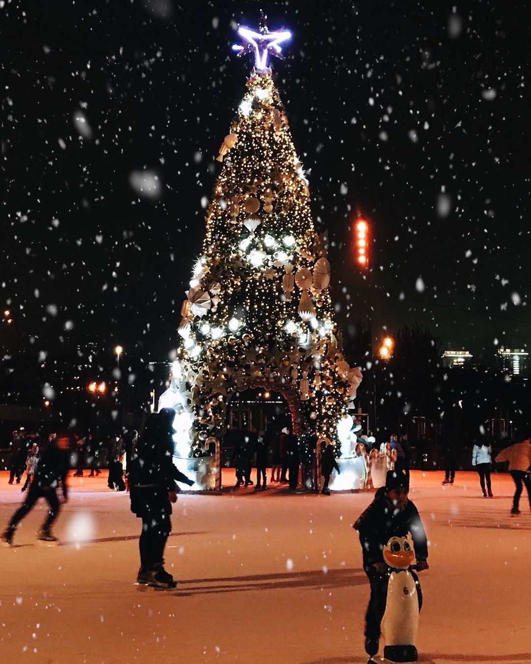 Снег, яркая иллюминация и нарядная елка - на этом фото @yuliabevzenko прекрасно все