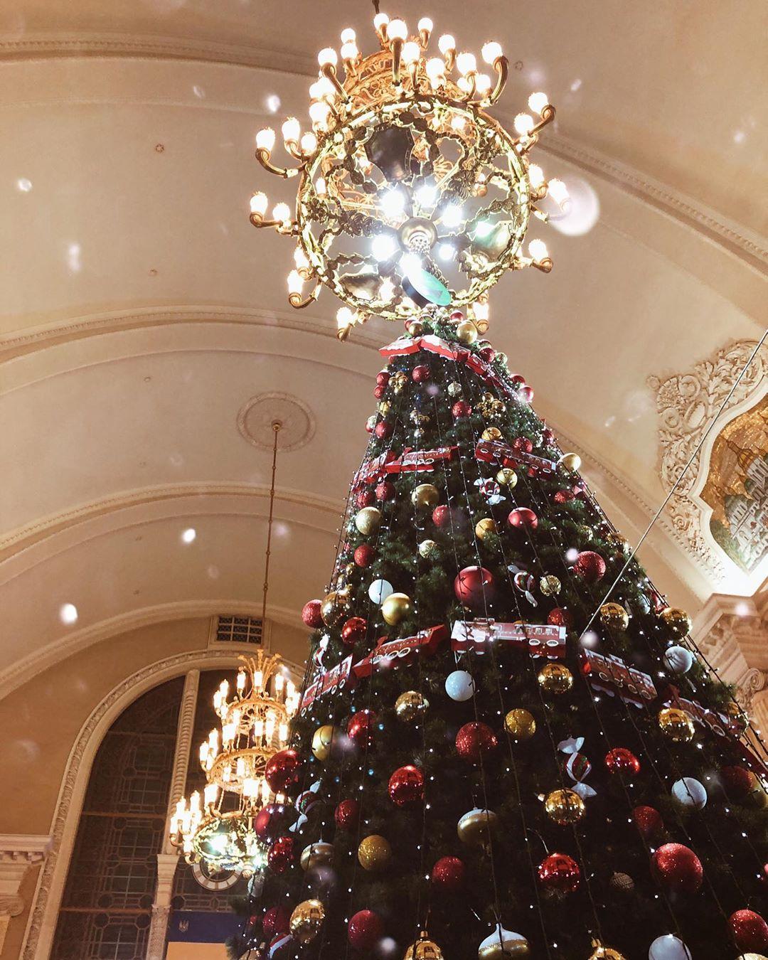 Больше елок - красивых и разных. Фото - @yuliia_noskova