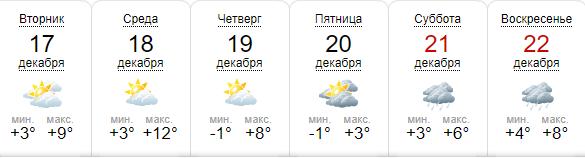 18 декабря температура достигнет 12°C