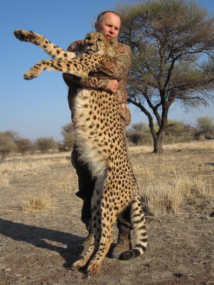 Больше всего внимания привлекли его снимки с носорогами, однако нардеп охотился и убивал и других животных