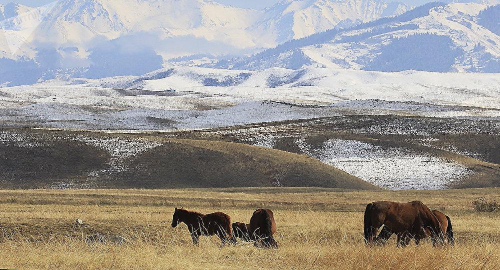 Казахстан пережил серьезное землетрясение