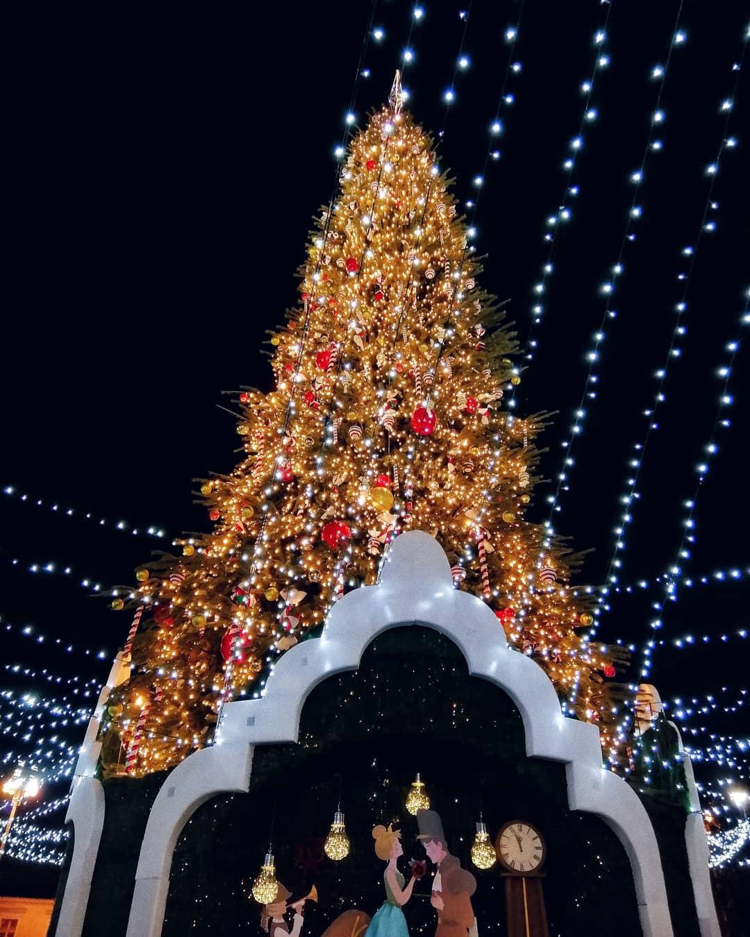 Все-таки в последнюю неделю главной локацией стала именно елка на Софийской площади. Фото - @viktoria_v111