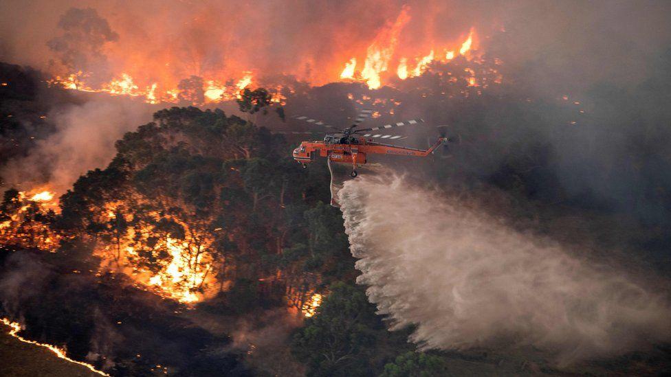 С огнем не удается справится уже несколько месяцев. Фото BBC