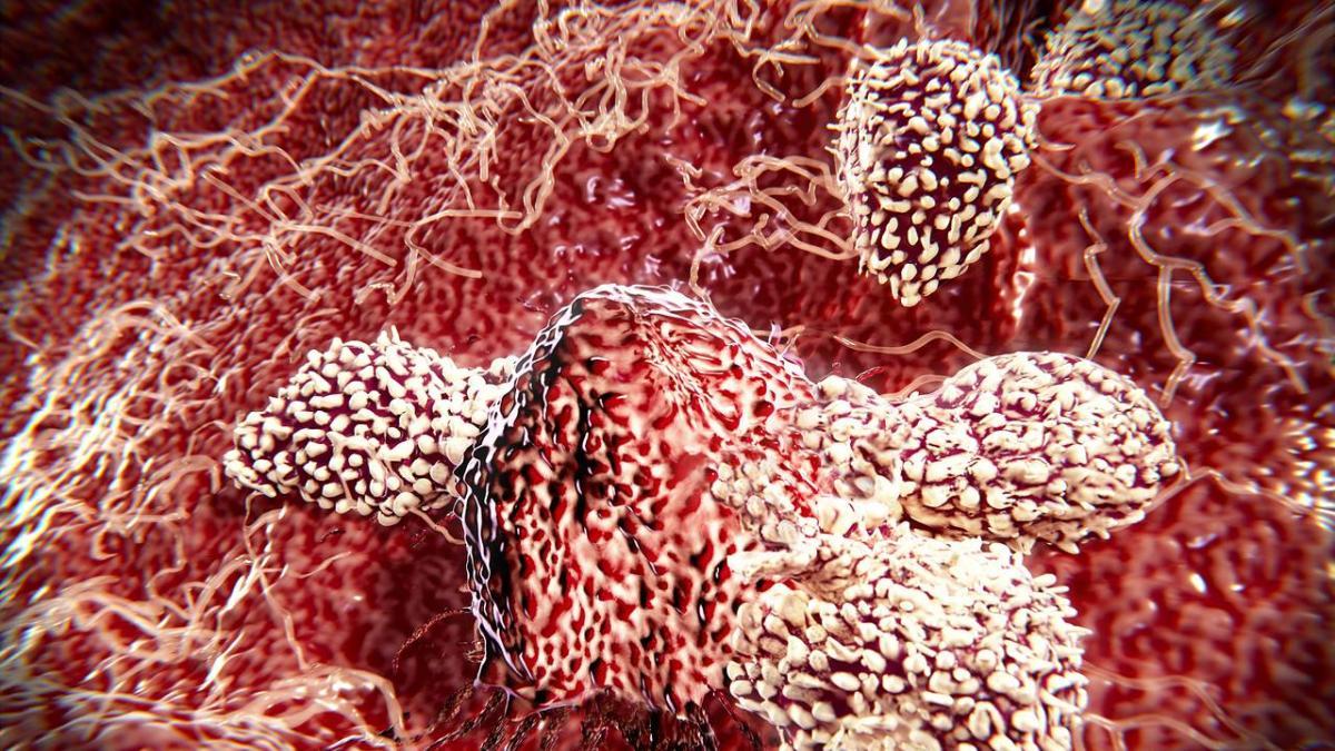 Ученые обнаружили клетки, которые способны лечить «все виды рака»