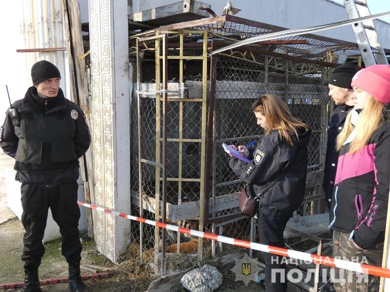 Через полторы недели, в присутствии полицейских, животных передали зоозащитникам