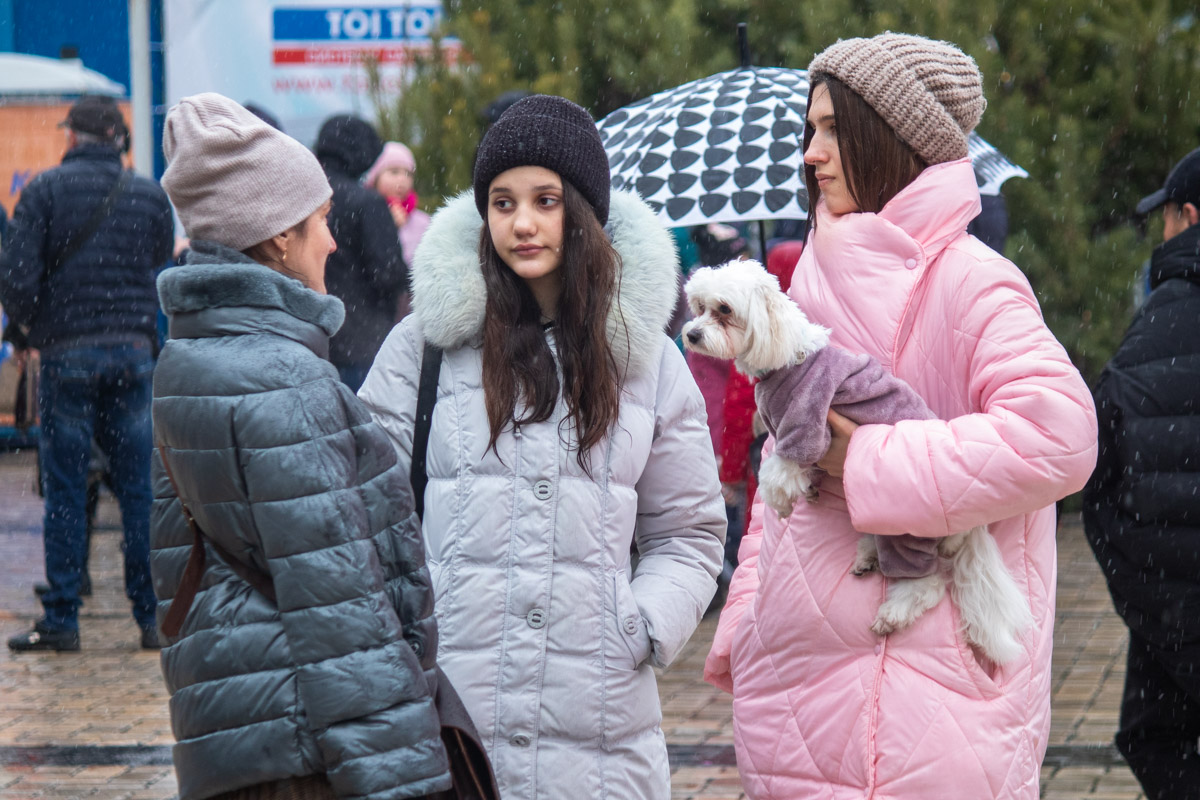 Все в теплых пуховиках, собачка также не уступает своим нарядом