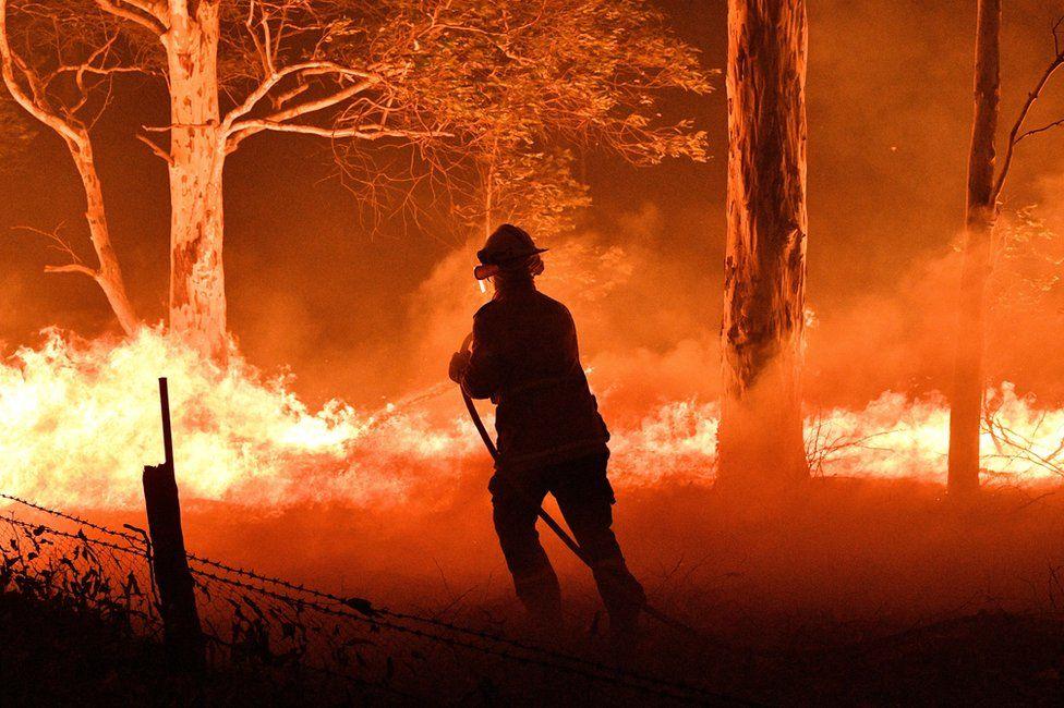 Пожарный тушит обугленные деревья, пытаясь спасти дома недалеко от города Науру в Новом Южном Уэльсе. Фото BBC
