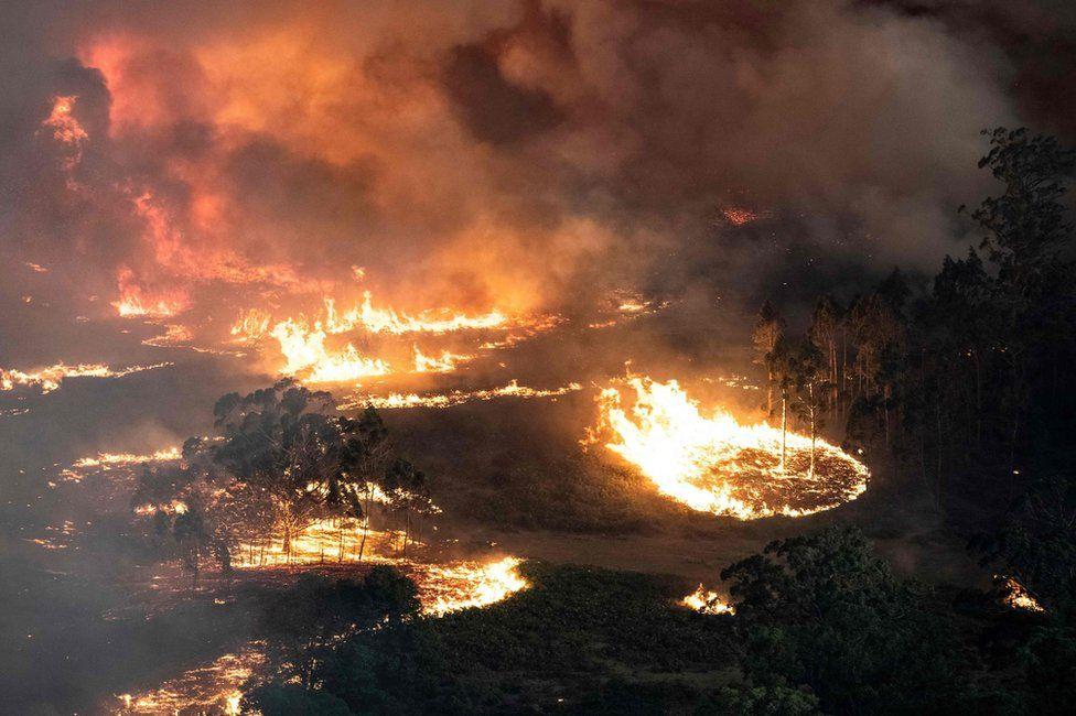 Уничтожительный огонь в Бэрнсдейл, штат Виктория. Фото BBC