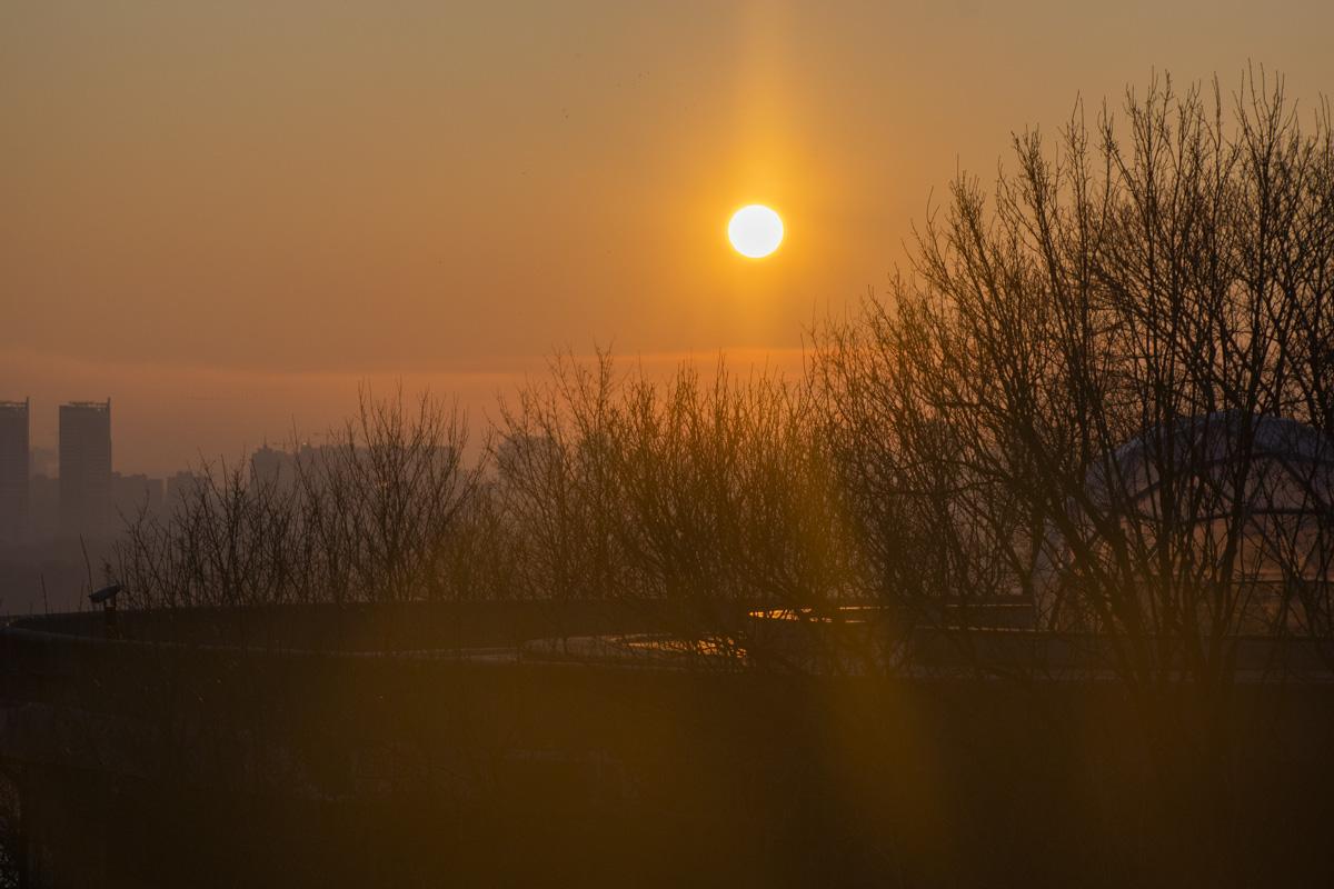Яркое солнце февральского утра