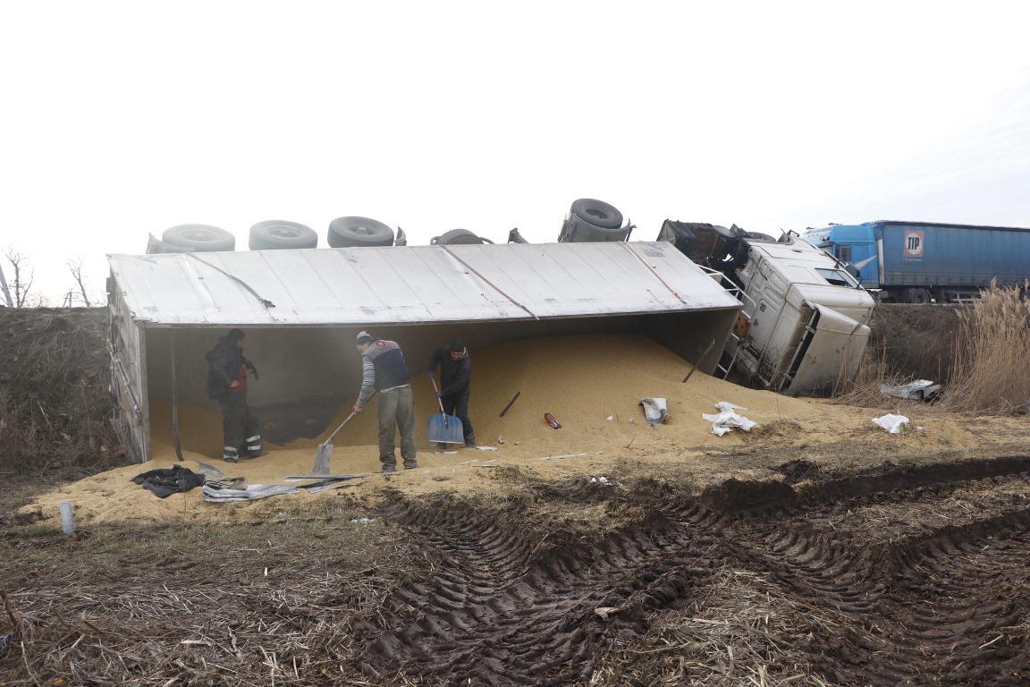 Прицеп грузового автомобиля был доверху загружен зернами кукурузы