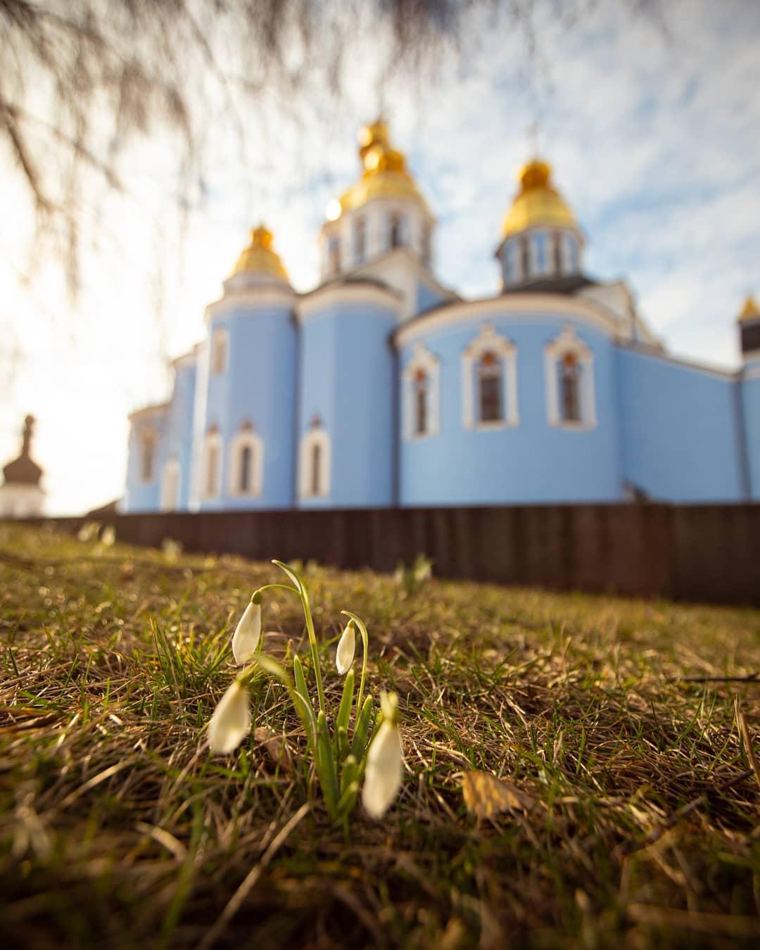 Фото @istetsen не только получилось очень ясным и солнечным, но и напомнило, что первоцветы в Киеве появились уже в феврале