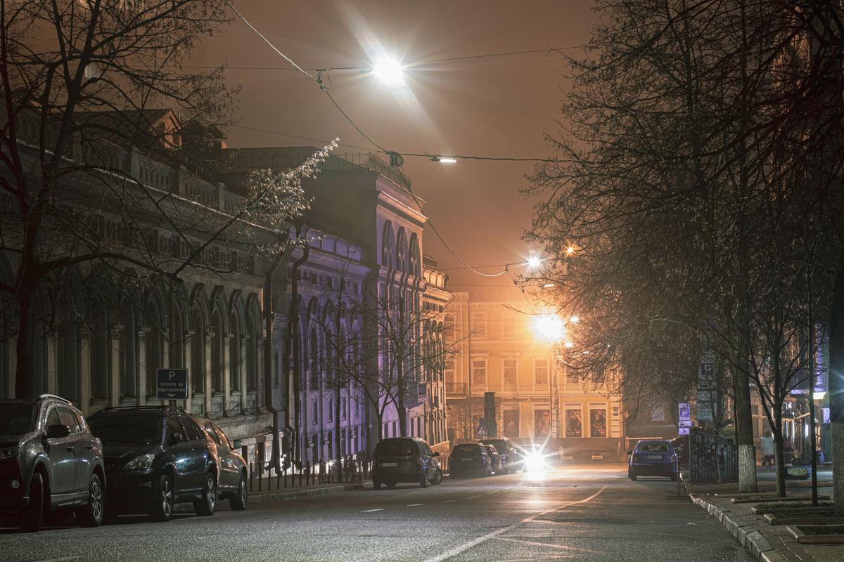 Частично на улице Лысенко располагается Национальная опера Украины