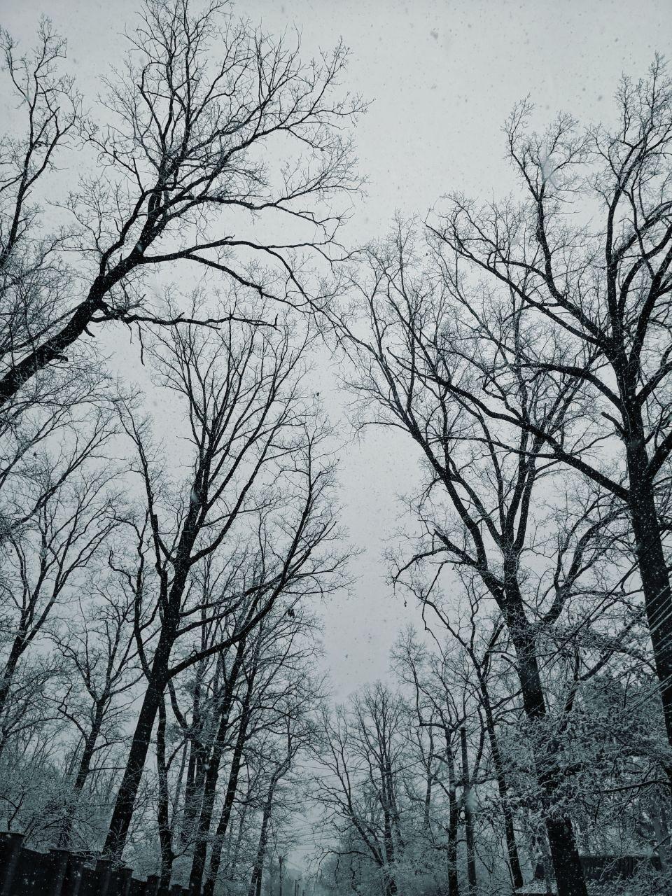 Есть в этой погоде как своя романтика, так и мистика