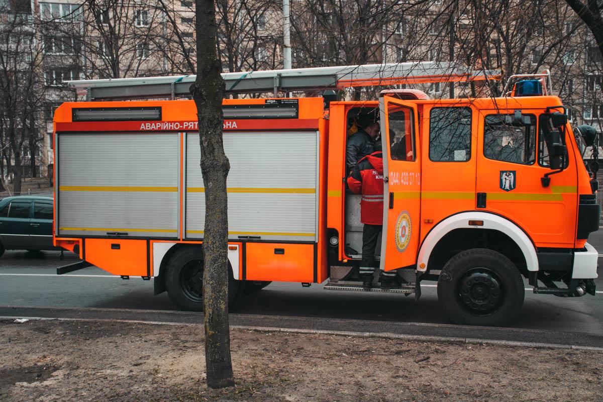 В результате пожара сотрудникам ГСЧС пришлось эвакуировать двоих жильцов верхних этажей и двоих их котов