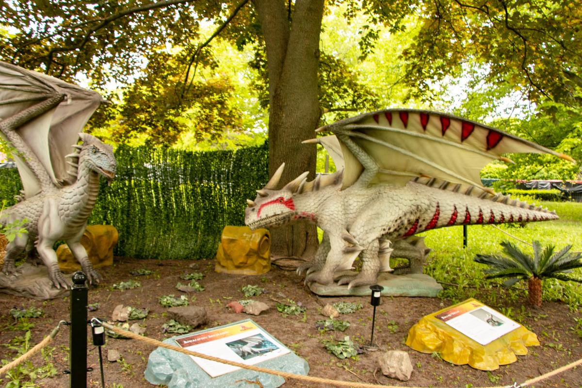 Всего на выставке более 20 драконов
